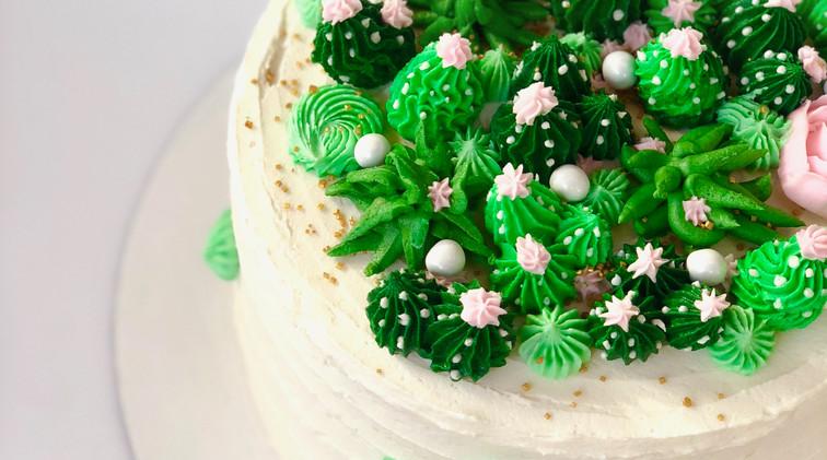 8 in succulent cake $75