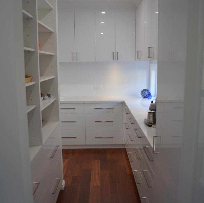 Walk through pantry