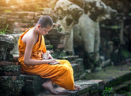 Les moines bouddhistes et les petits félins.