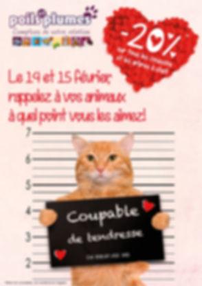 saint valentin_affiche2.jpg