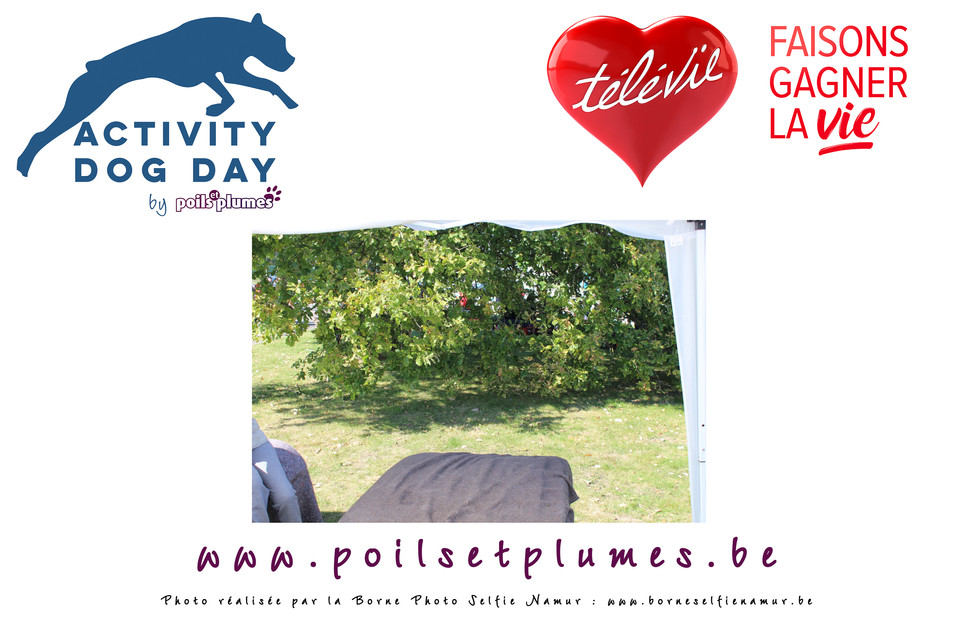 victoria_willems_30_09_18__13_15_54_Comp
