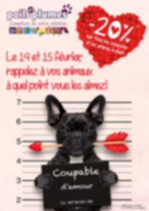 saint valentin_affiche.jpg