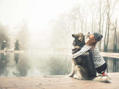 Promener son chien en hiver.