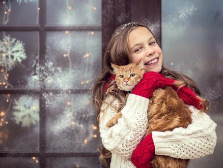 """Pour que les """"animaux cadeaux"""" du mois de décembre ne soient pas les abandonnés de l'été."""