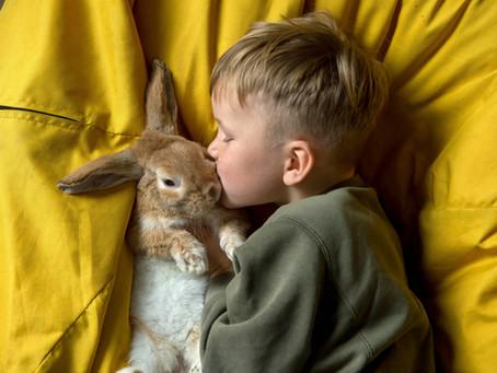 Le monde animal... des infos pas banales !