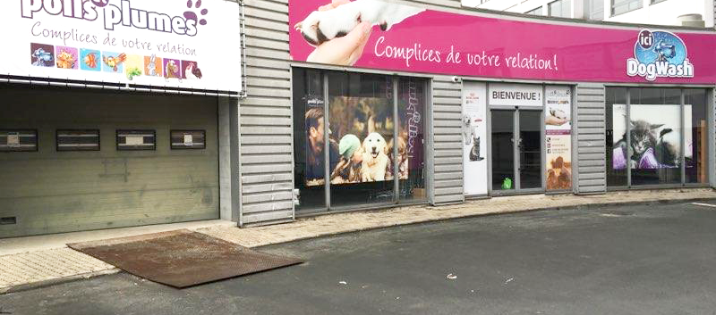 uccle2.png