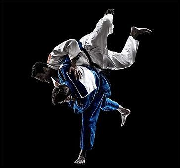 judo 2020.jpg
