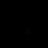 black _4x.png