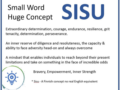 It has been a tumultuous 2020 with a positive attitude we will persevere and succeed- SISU.