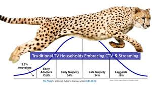 CTV running  through the diffusion curve like a cheetah at high speed