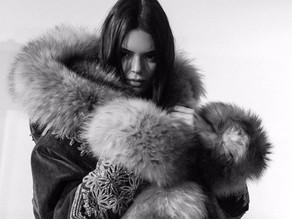 Fur, a Superficial or Biological Desire?
