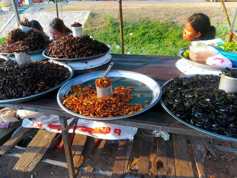Bug Cart Siem Reap