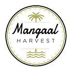 9 mangaal harvest.jpg