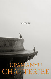 Way to Go by Upamanyu Chatterjee