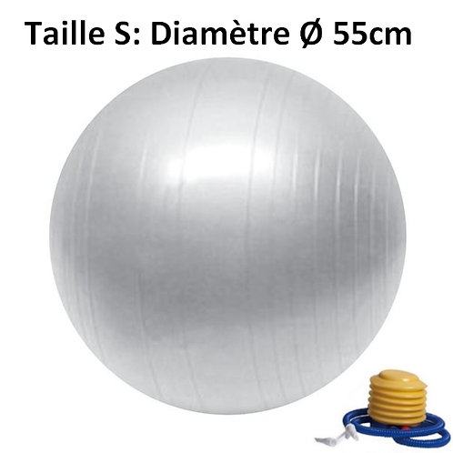 Ballon de Yoga / Fitness Taille S 55 cm Gris