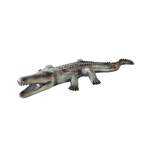 CROCODILE GRIS TGM