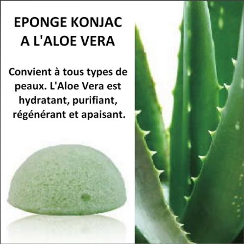 LCEponge KONJAC à l'Aloe Vera