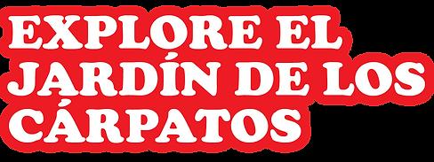 TEXT TÍTOL.png