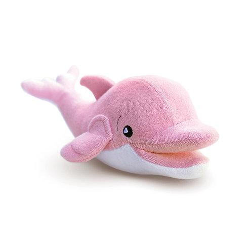 Ava the Dolphin