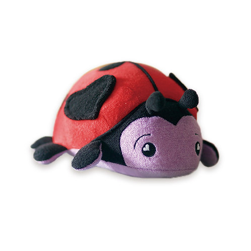 Bella Ladybug