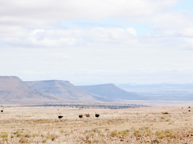 South Africa: Eastern Cape