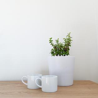 Modern White Mugs