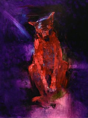 DEVIL DOG AND THE BLUE COMET