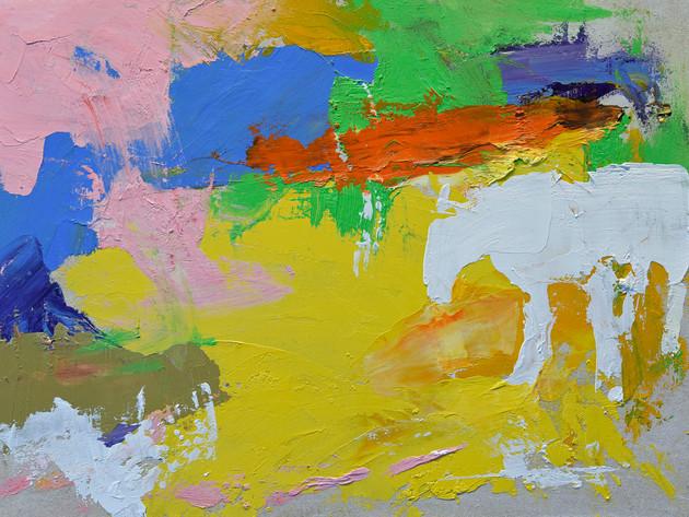 VANISHING HORSE