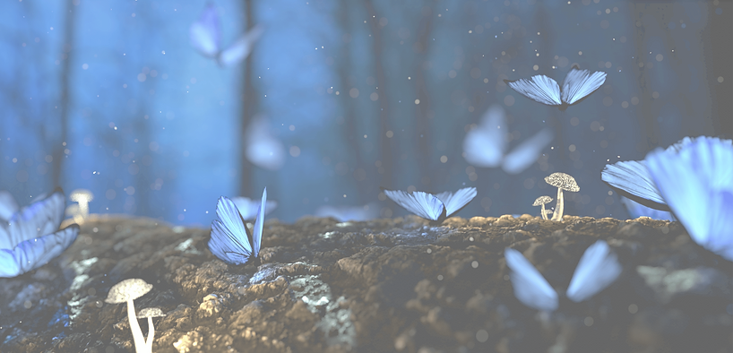 Butterfly BG 15.png