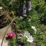 Happy frogs above Chamonix