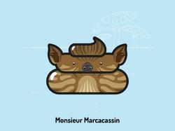 Monsieur Caca