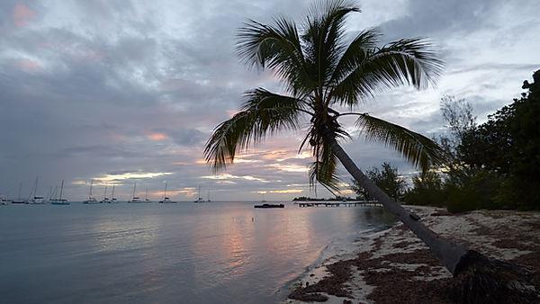 Croisière aux îles Vierges Britanniques, BVI's, BVIs, Anegada, barrière de corail, Club de croisière, faire de la voile, apprendre la voile, croisière à la voile, croisière en catamaran, Transatlantique, transat, traversée de l'Atlantique