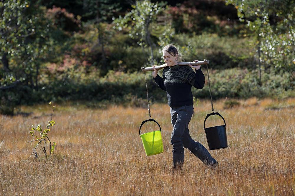 Marit Karlsen bærer to bøtter vann med et åk