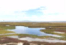 Langebaan Lagoon 2.jpg