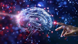 Neurociência e as suas decisões