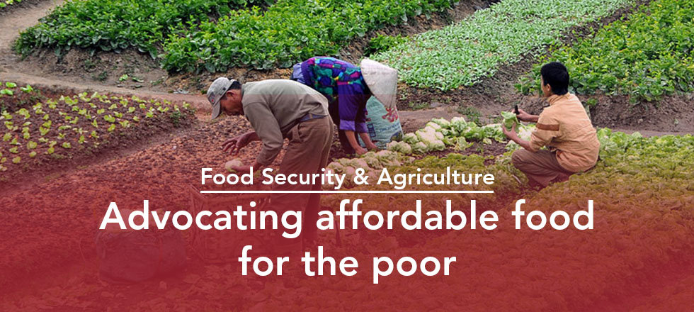 Food Security and Agriculture Banner.jpg