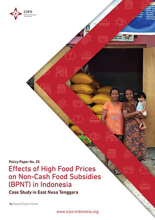 Cover 16B_Effects of High Food Prices on