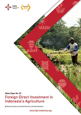 Foreign Direct Investment in Indonesia