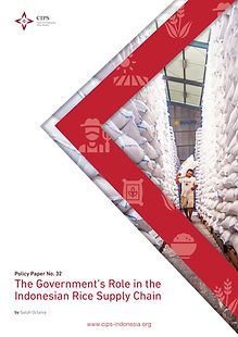 Cover_18B_ The Government's Role in the