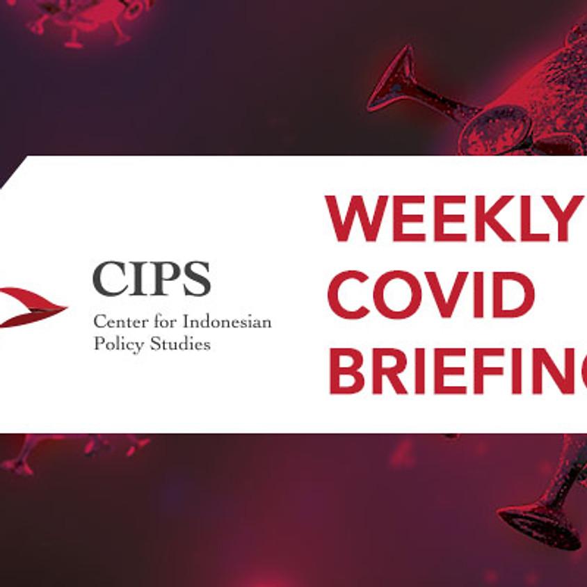 CIPS Weekly Covid Briefing #4