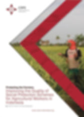 CIPS Policy Paper Protecting the Farmers: Improving the Quality of Social Protection Schemes for Agricultural Workers in Indonesia