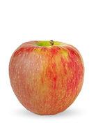 YF-Web-Apples-Honeyscrisp-1.jpg