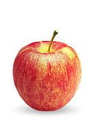 YF-Web-Apples-Gala-1.jpg