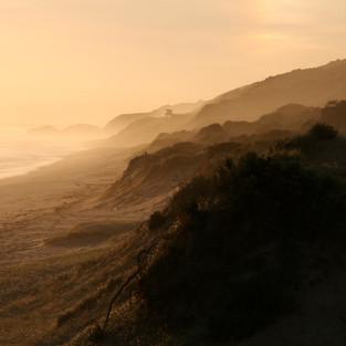 back beach (1) (1).jpg