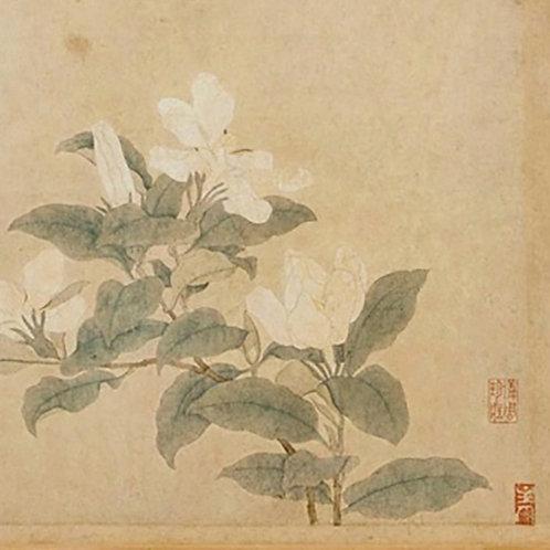 September Online SUNDAY Meditation with Zhen Dao
