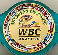 Euro belt - Copy (2).jpg
