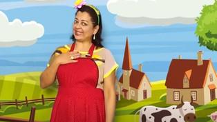 Folclore - Bumba Meu Boi