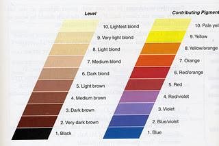Color Pigment Wheel