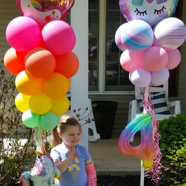 Deluxe Party Poles $55