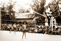 volley_team_k23_6